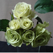Rose posy green 6 heads 1196