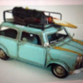 Blue Travelling Mini