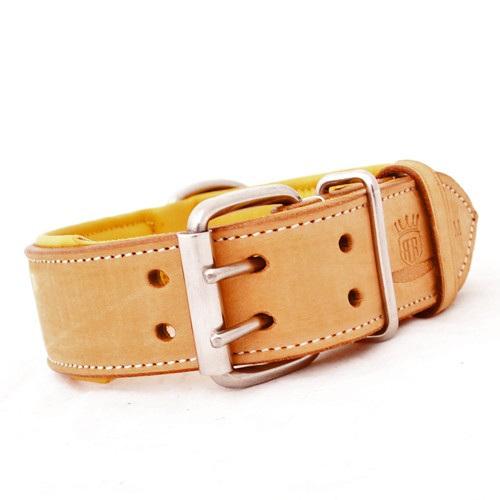Tough Dog Collars Nz