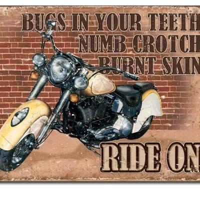 Bugs in your teeth