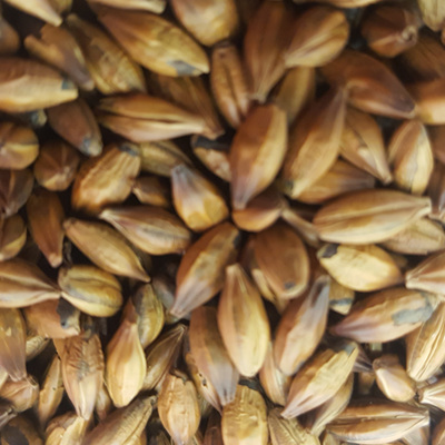 Gladfield Brown Malt