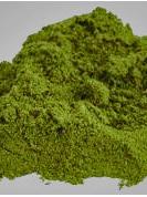Hemp Seed Protein Powder - 500g