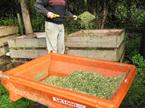 Husks make great compost